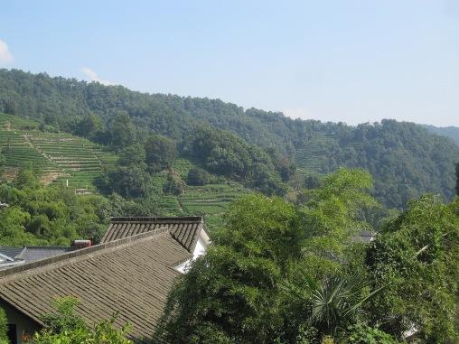 Benschilada Impressions of Hangzhou (13)
