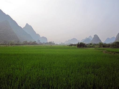 Benschilada Sightseeing Yangshuo - Guilin (19)
