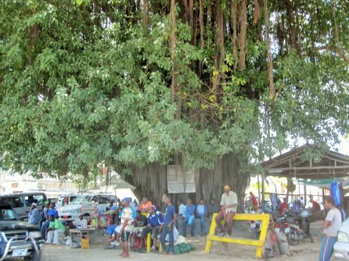 Benschilada Sansibar - Dar Es Salaam (32)