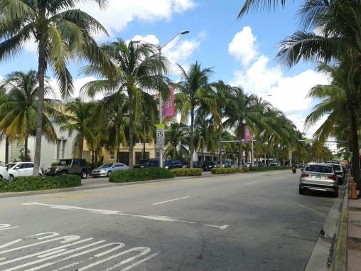 Benschilada Florida (37)