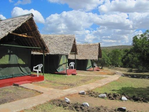 Benschilada Kenia Safari Nairobi (13)