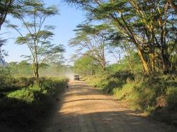 Benschilada Kenia Safari Nairobi (30)