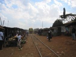 Benschilada Kenia Safari Nairobi (46)