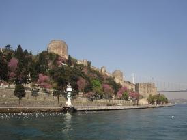 Benschilada Istanbul (47)