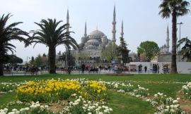 Benschilada Istanbul (6)
