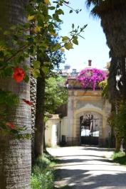 Impressions of Lisboa Benschilada (127)