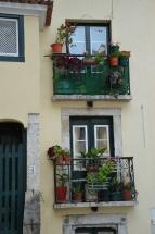 Impressions of Lisboa Benschilada (76)