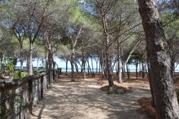 Orosei, Spiaggia di Su Barone
