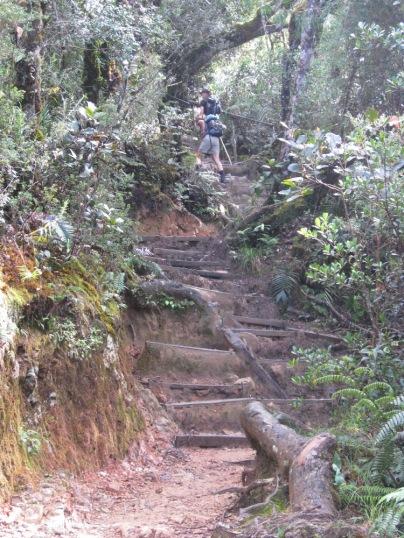 Malaysia - Climbing Mount Kinabalu (3)