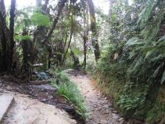 Malaysia - Climbing Mount Kinabalu (44)