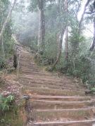 Malaysia - Climbing Mount Kinabalu (45)