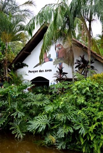 foz do iguacu (29)