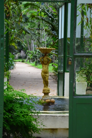 Rio de Janeiro (119) - jardim botanico