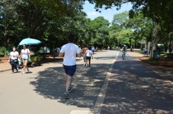 Brazil (36) Sao Paulo Parque do Ibirapuera