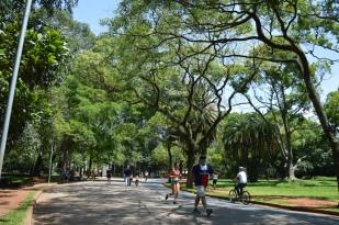 Brazil (40) Sao Paulo Parque do Ibirapuera