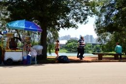 Brazil (44) Sao Paulo Parque do Ibirapuera