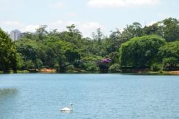 Brazil (47) Sao Paulo Parque do Ibirapuera