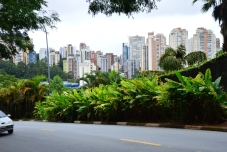 Brazil (73) Sao Paulo Parque Burle Marx