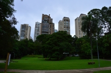 Brazil (78) Sao Paulo Parque Burle Marx