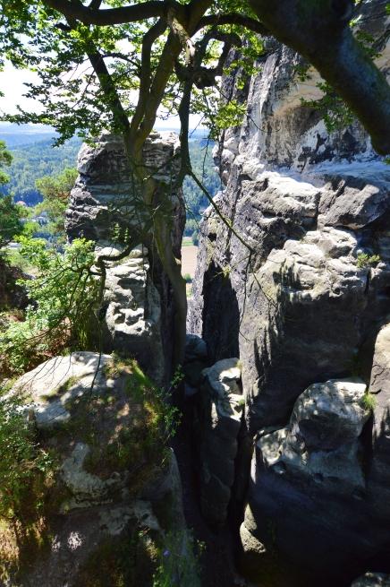 Basteibruecke Elbsandsteingebirge Sachsen (16)