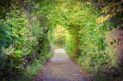 Der Tunnel in den Herbst
