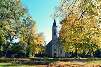 Goldener Herbst in Erlangen (6)